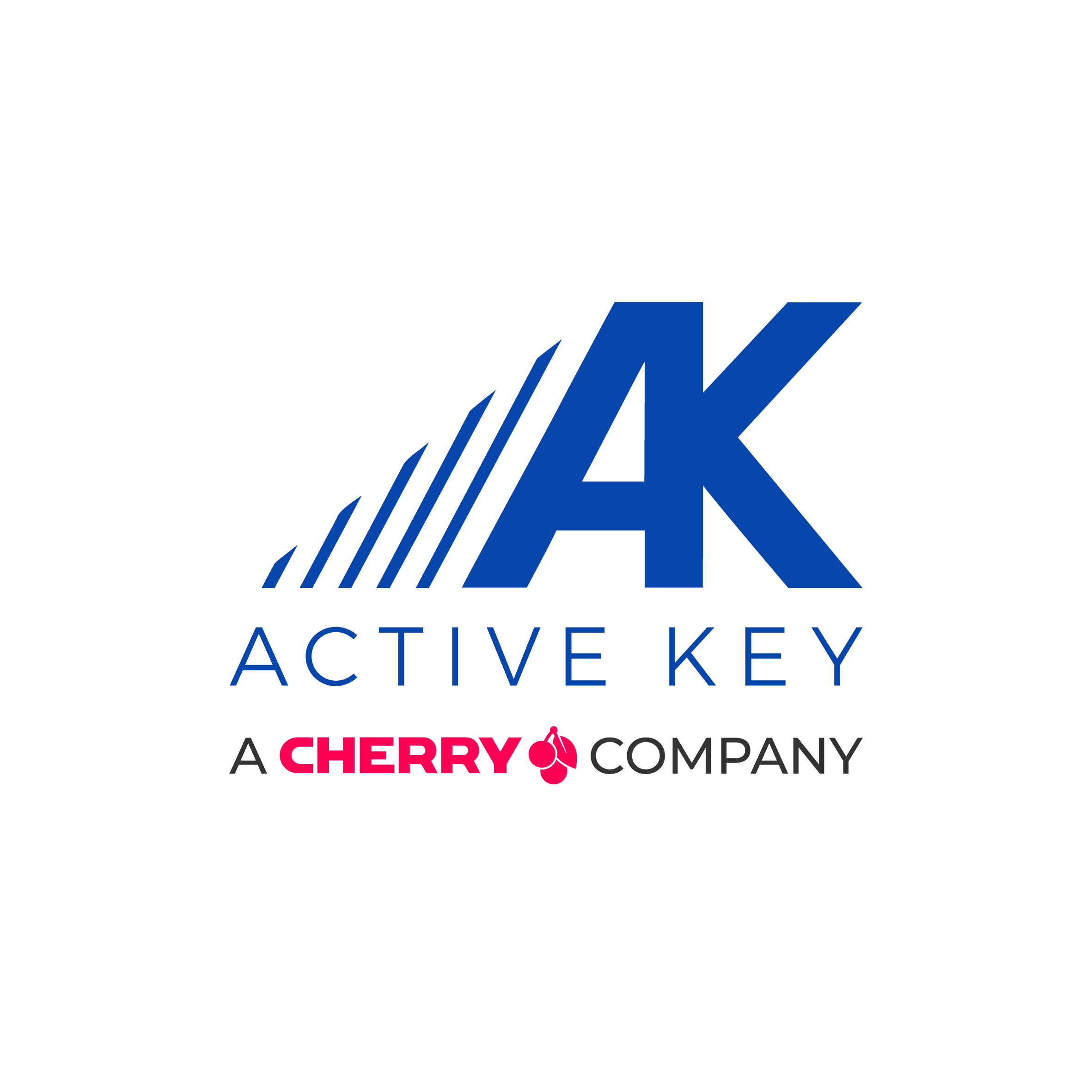 Active Key GmbH & Co. KG